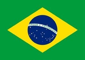 ブラジル ブラジル完熟 粉 100g