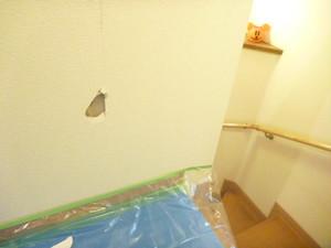壁穴 補修 値段