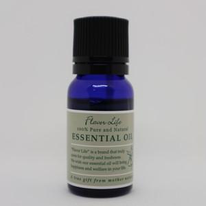 サイプレス エッセンシャルオイル(精油・アロマオイル) 10ml