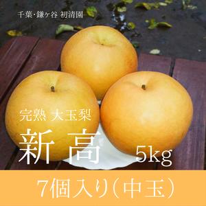 【ジューシーな大玉梨】新高中玉 7個入り 5kg