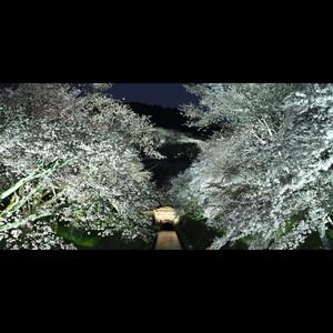 ワイドプリント額装品 滋賀県琵琶湖疎水
