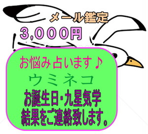 メール鑑定(1件限定)