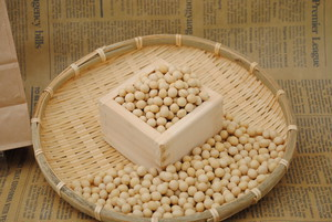 1kg 大豆 北海道産