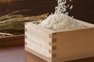 【特別栽培米】ゆりはまの頂き「きぬむすめ」 5kg