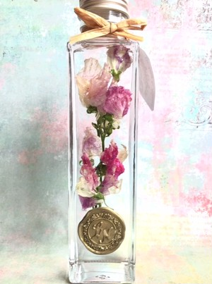 ★再入荷★【in the bottle】sweet pea