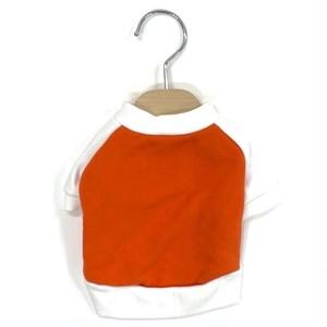 Kelty リメイクラグランT-shirt