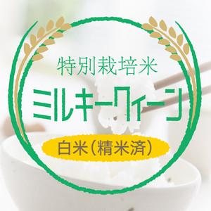 特別栽培米 ミルキークイーン 白米27kg〈1週間以内で発送〉