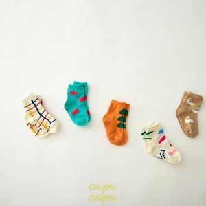 «予約» various socks 5set ベアリアスソックス 5足セット