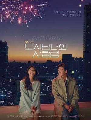 韓国ドラマ【都会の男女の恋愛法】Blu-ray版 全17話