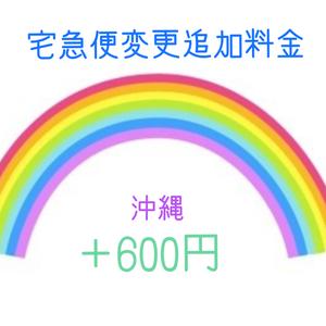 コンパクト便変更追加料金(沖縄)