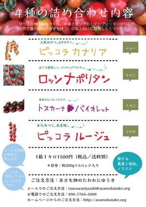 たわわに遊きミニトマト(2kg)