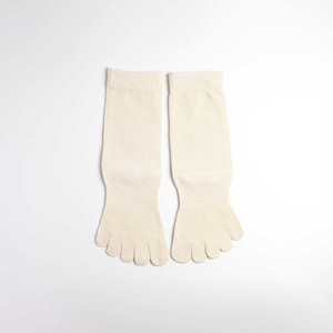 絹の靴下 あすか 5本指ソックス〈22~24㎝〉