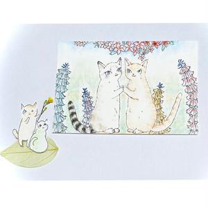 猫/ポストカード/エリカとヒース/保護猫支援