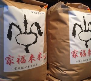 家福来米 自然栽培米 30㎏ 玄米