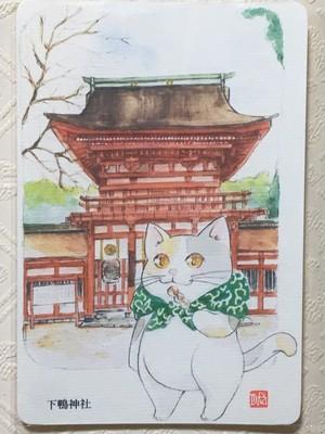 旅猫ミケポストカード 下鴨神社