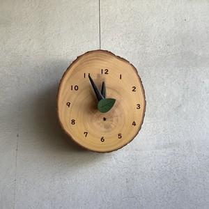 イチョウ01 森の時計