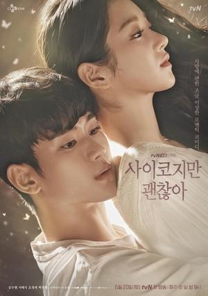 韓国ドラマ【サイコだけど大丈夫】Blu-ray版 全16話