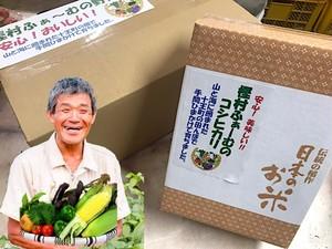 旬の野菜お任せBOX