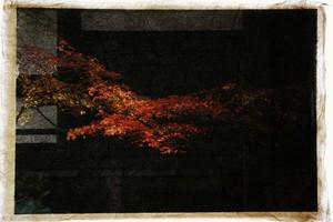Shunsai Yonemura's artwork 真如堂、京都 Phoenix, Shinnyodo temple, Kyoto