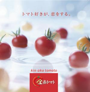 トマト好きが、恋をする。※クール便 1000g×2 金赤トマトミニ