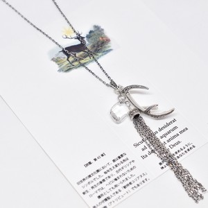 Packaged collection  Antler
