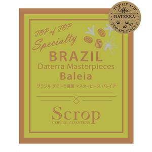 会員限定 ブラジル ダテーラ農園  バレイア マスターピースオークションロット  中浅煎り 100g