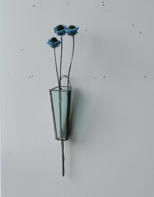 植物器:trapezium vase〚アンモビューム〛