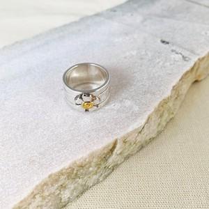HANA ring