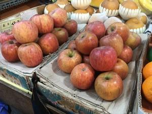 【現在39個】韓国大田(テジョン)での個展でリンゴを配る作品を作りたいのでリンゴを買ってほしい!