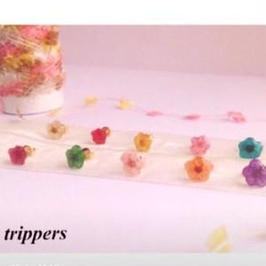 ★★小さなお花の樹脂イヤリング&ピアス