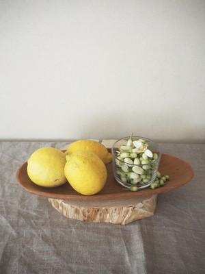 文旦の花とレモンのBOX【花ジャムレシピ付き】