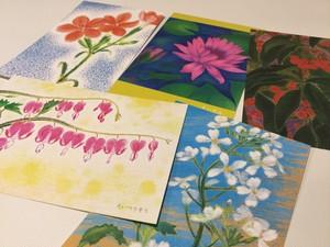 花のポストカード「絹の庭」