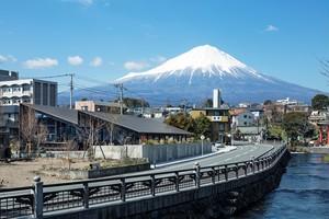 Mt.Fuji Brewing|富士宮市|ブルワリーレストラン