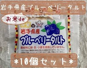 アレルギー対応♪ 10個セット*冷凍デザート・給食デザート『お米deブルーベリータルト』