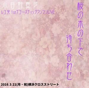 1stアコースティックワンマンライブDVD『桜の木の下で待ち合わせ』