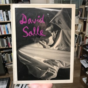 David Salle / SALLE PHOTOGRAPHS 1980 TO 1990