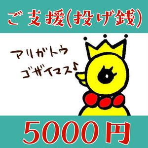 ピピへのご支援(投げ銭)5000円