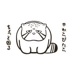 マグカップ★マヌルネコ