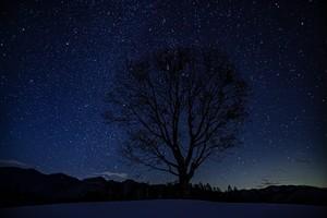 冬の星空(開田高原)