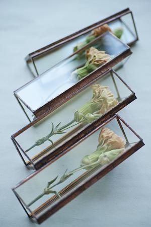 【ラスト1点】△植物標本:ドライフラワー〚スプレーカーネーション  ベージュ蕾付き〛