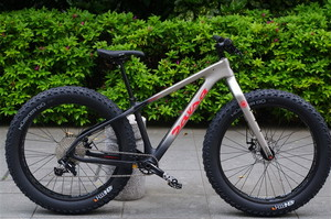 SALSA CYCLES / 2017 BEARGREASE CARBON NX1