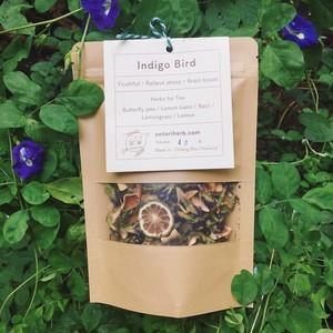 Indigo Bird -藍い鳥-