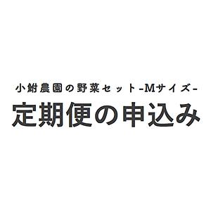 【定期便申込み】小鮒農園の野菜セット-Mサイズ-定期便申込み