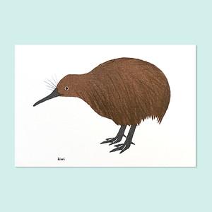 キーウィのポストカード