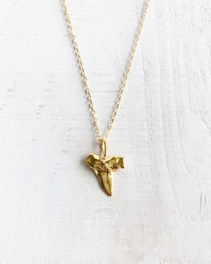 Shark tooth necklacn