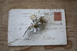 エーデルワイスの布花ブローチ