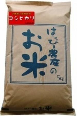 《お得な定期便!》愛知県産 白米(コシヒカリ)5kg×2袋 【はっぴー米】