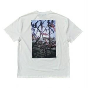 メンズ半袖Tシャツ。バックプリント花柄フォト風ブラック/ホワイト2カラー