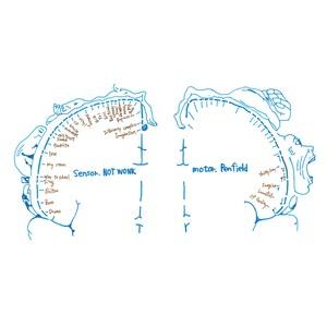 NOTWONK / Penfield (CD+DVD)