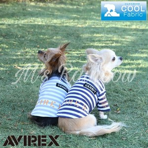 AVIREX【春夏新作】ボーダークルーネックティー